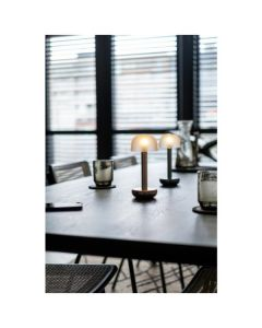Humble Two LED lamp (titanium rookglas)