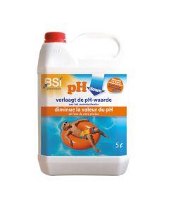 BSI 6258 pH DOWN Liquid 5 L