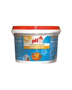 BSI 6265 pH UP Powder 2,5 Kg